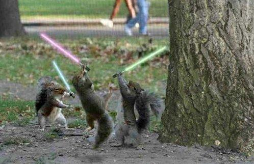 They think they are OT, but in fact they are just squirrels